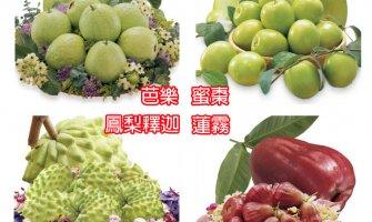 ◤TWEU◢ 限期預購 2020 0106 《TW 》台灣水果大餐